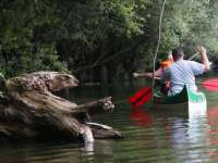 Titokzatos vadon és csodálatos vízi világ - fedezzük fel a környéket