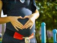 terhesseg